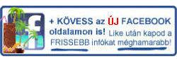 Online Pénzkeresés Facebook
